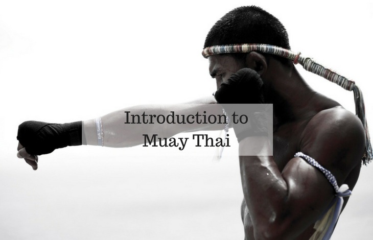 Introduction To Muay Thai
