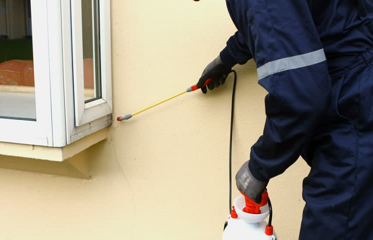 pest management Sydney